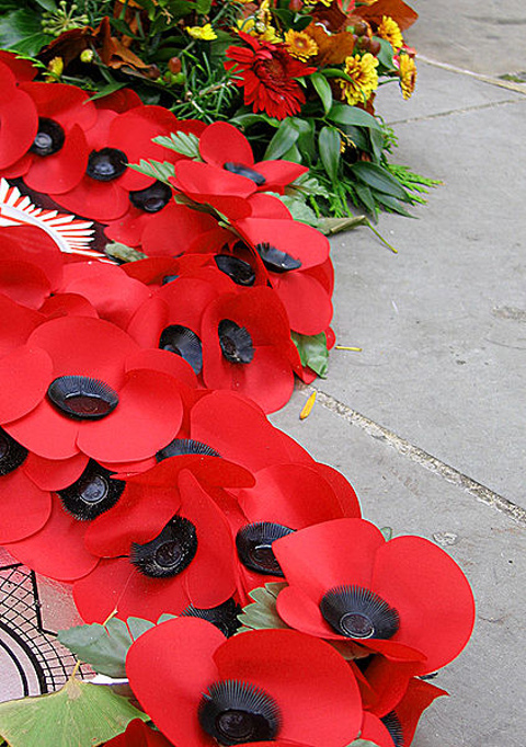 422px-RemembrancePoppies