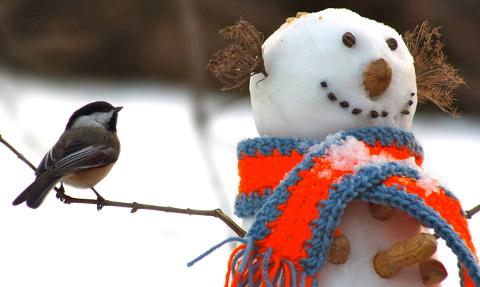 Bałwan Ze śniegu Kronika Montrealska