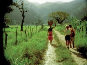 Jamaïque-Chemin-de-campagne
